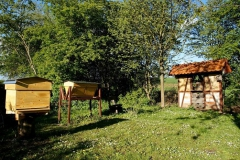 PothmerDetfurth050516-002